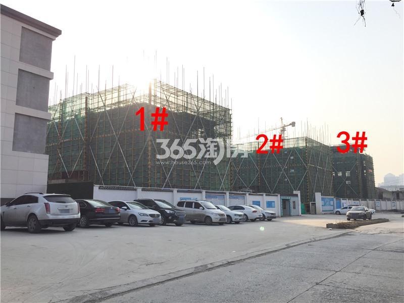 绿地理想城悦湖公馆在建1、2、3#楼实景图(2.18)