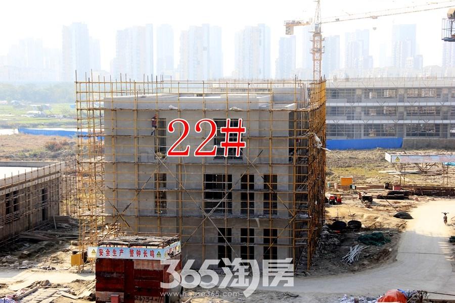 云谷科技园22#施工中(2017.11摄)