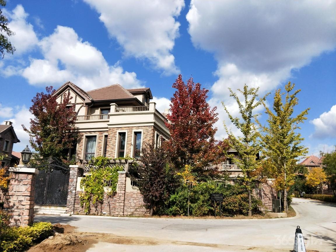 保利十二橡树庄园4室3厅4卫323平米2012年产权房毛坯