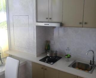 银泰公寓 面积47--67平 单价6800左右 楼层*** 公寓投资商铺收益