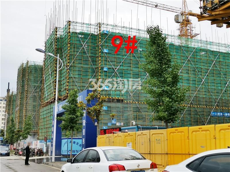 蓝城蘭园在建9#楼实景图(5.30)
