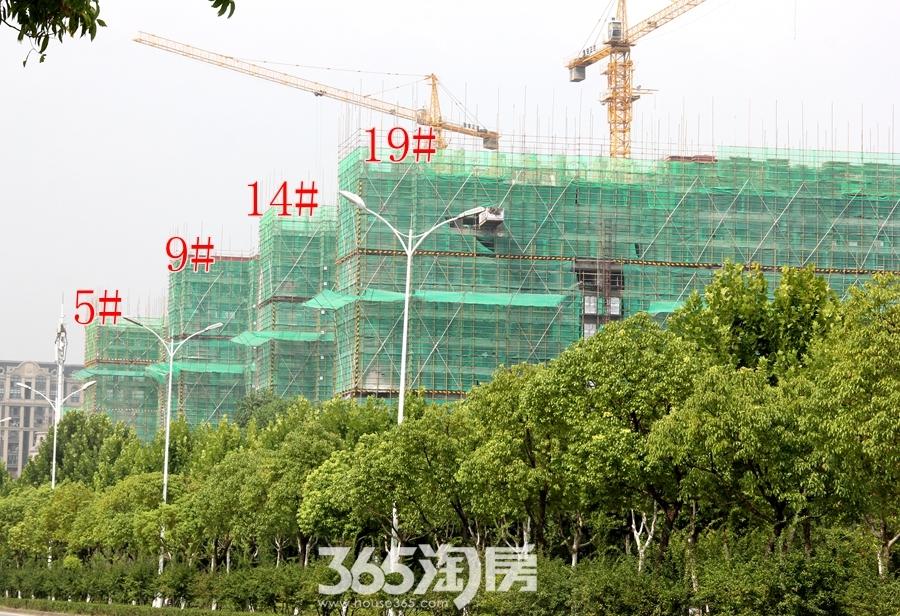 新华联铂悦府5#9#14#19#工程进度(2018.8摄)