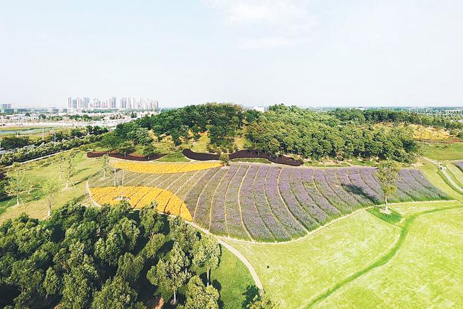 幸运飞艇规律破解:合肥迈向绿色生态城市