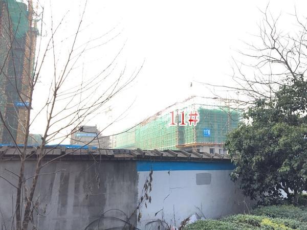 融侨悦府11#楼洋房实景图(2018.4 摄)