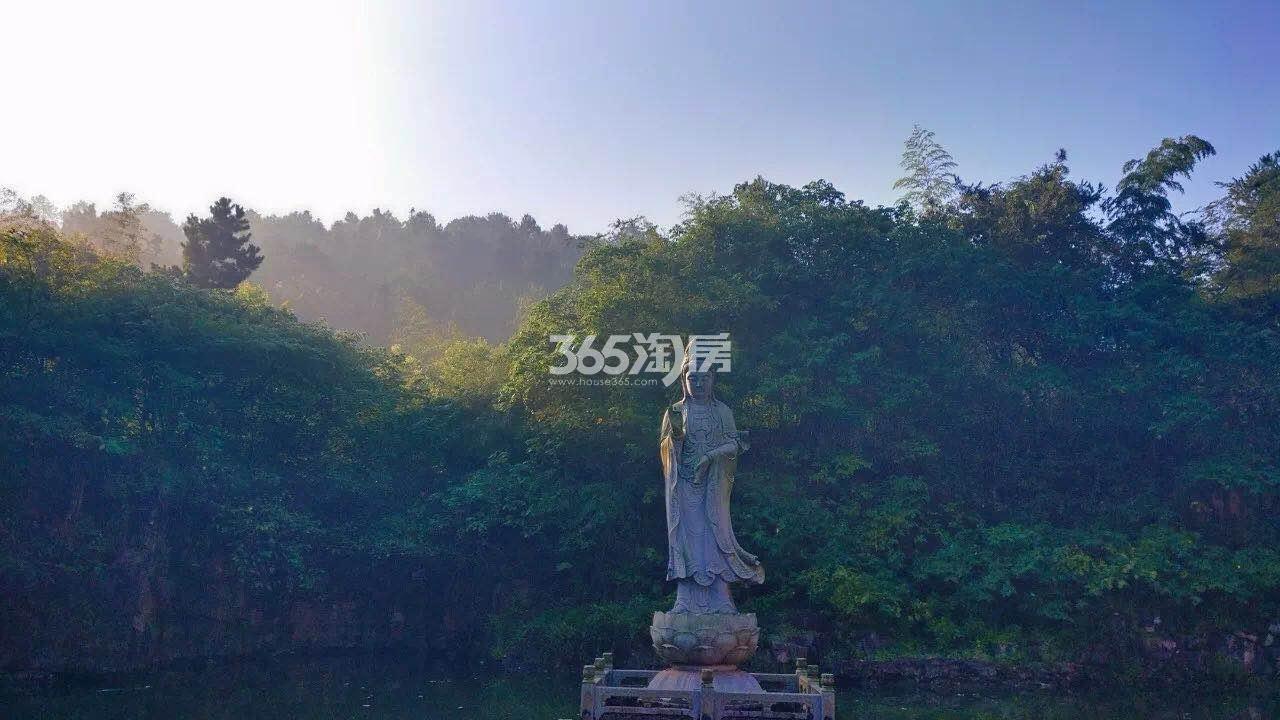 美好紫蓬山壹号项目周边实景图(2018.4.3)