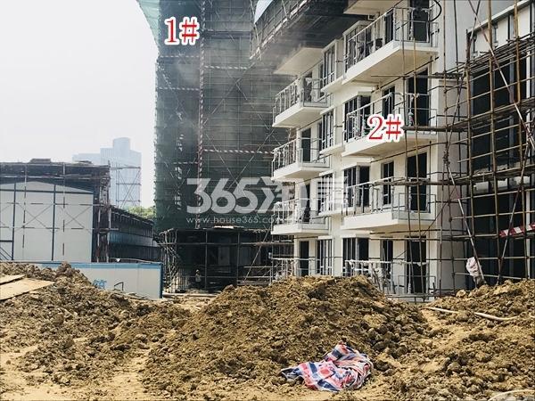 中洲崇安府高层1#、2#楼实景图(2018.5 摄)