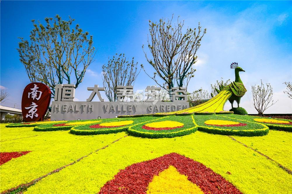 南京恒大养生谷实景图