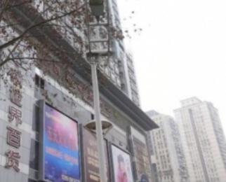 新世界中心B座19平米整租精装