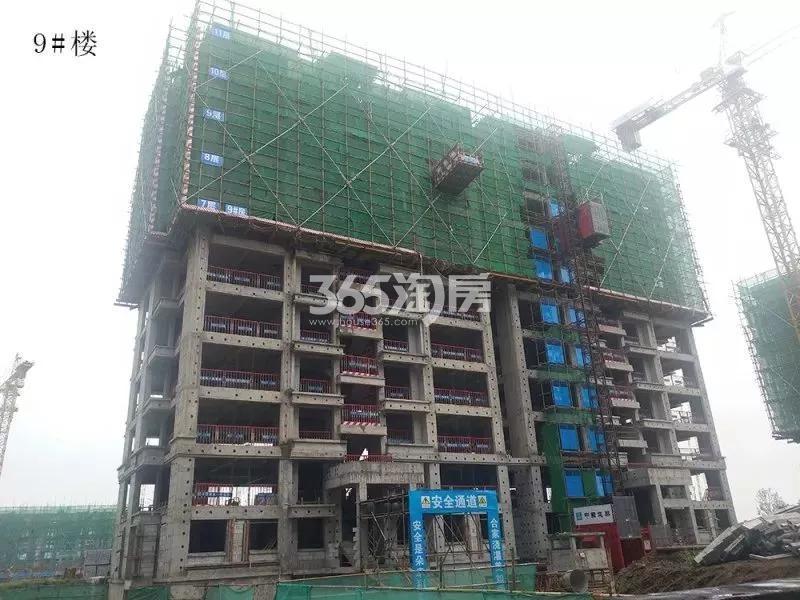 鸿坤理想湾9#楼实景图(2018.7 摄)