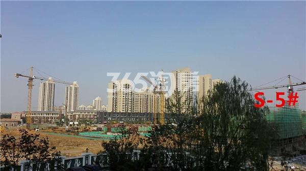枫林天下康城S-5#楼在建实景图(11.14)