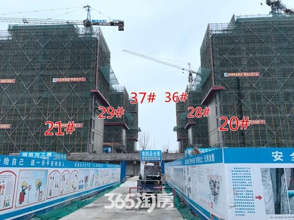 伟星玖璋台多栋楼施工中(2017.12摄)