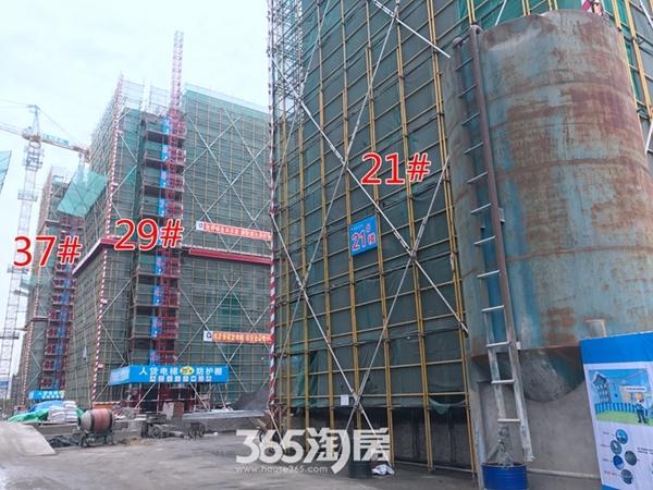 伟星玖璋台21#29#37#楼施工中(2017.12摄)