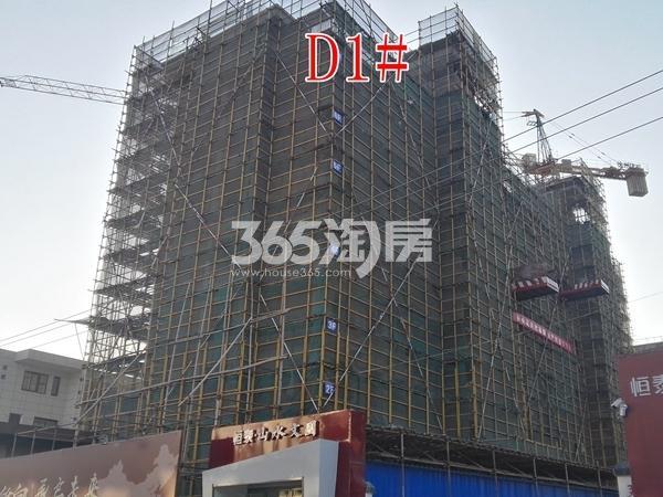 恒泰山水文园工地D1#楼工程进度实景图(12.25)