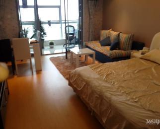 城市之光国际公寓1室1厅1卫57平方产权房精装带大阳台