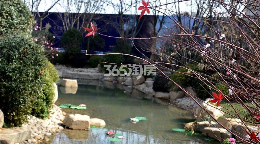 蓝光雍锦半岛内部实景图(12.27)