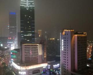 禾嘉国际酒店式公寓1室1厅1卫56平米整租精装