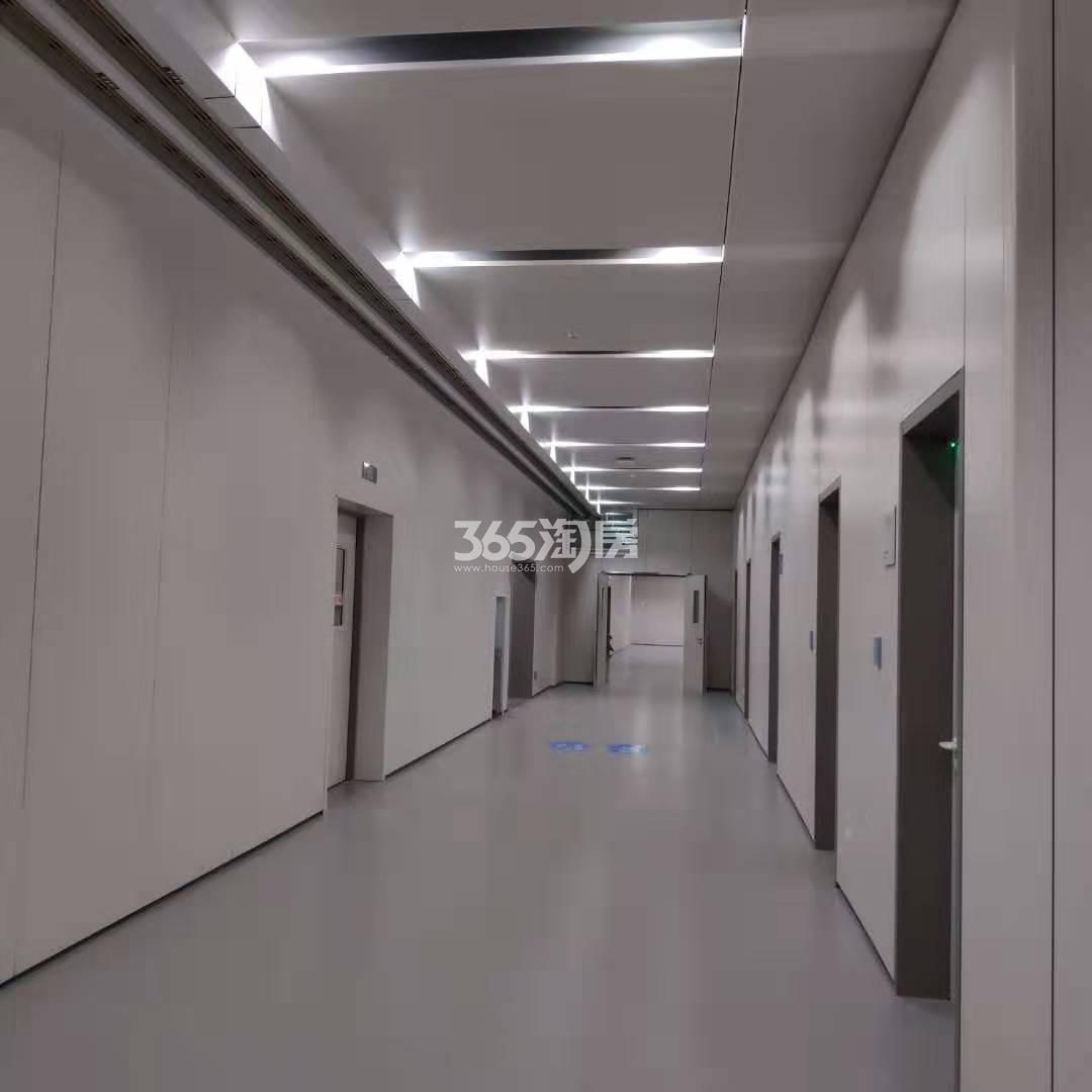 扬子江金茂悦周边配套——鼓楼医院江北分院(2.27)