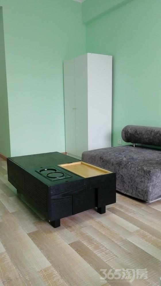 华润中央公园1室43平米整租精装