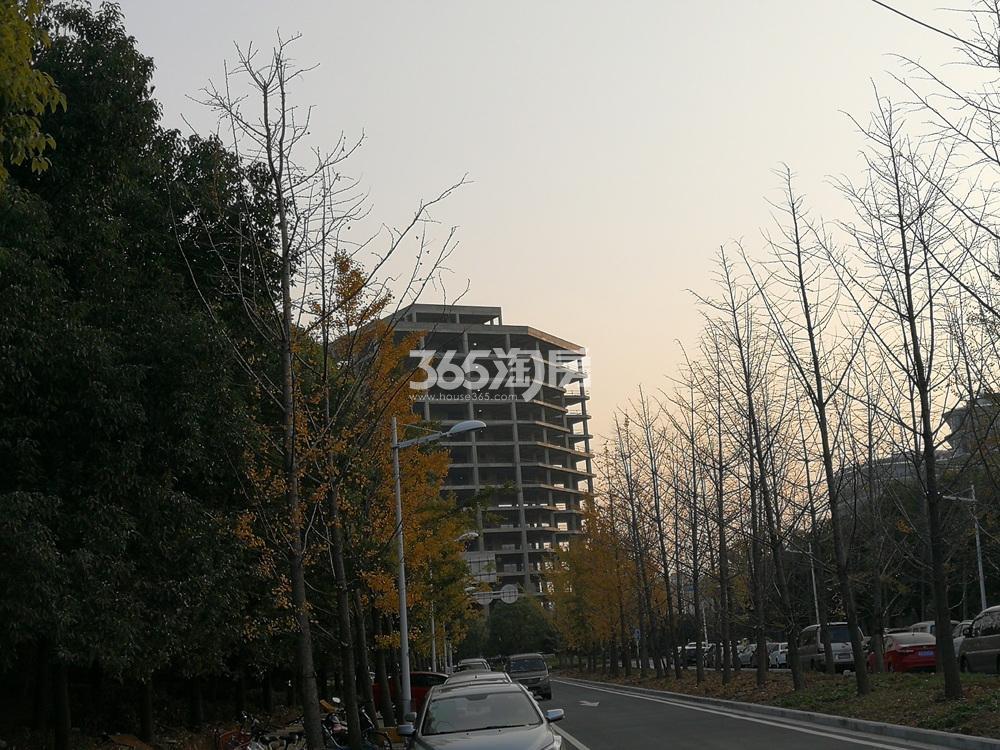 建发紫悦广场在建周边实景图(12.27)
