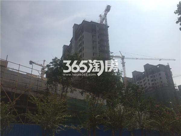 高科荣境项目实景图(9.19)