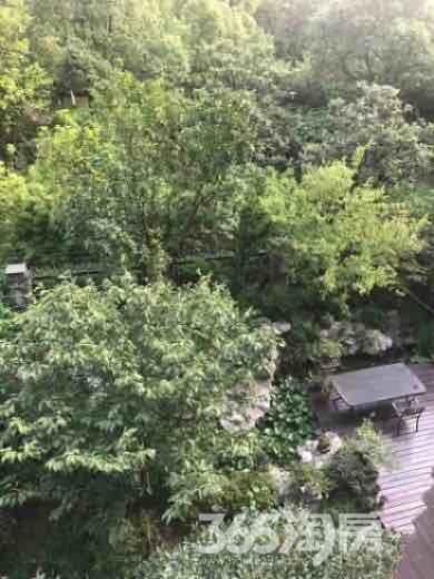 长江国际二期臻园4室2厅2卫138平米整租豪华装