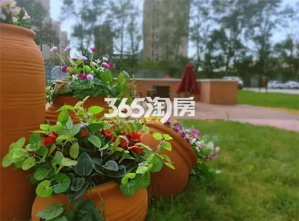 汇智五洲城实景图