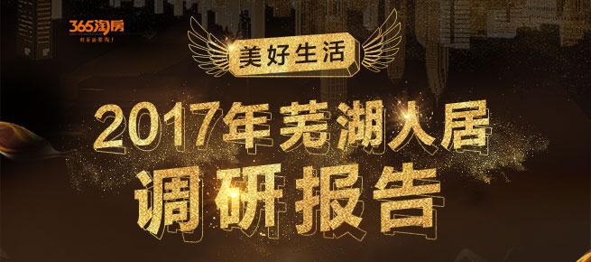 2017芜湖人居调研报告