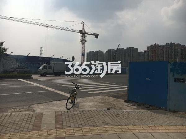 中南海棠集实景图
