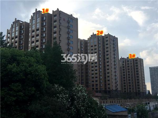 栖霞栖庭1#、2#、3#楼现房小高层实景图(2017.12摄)