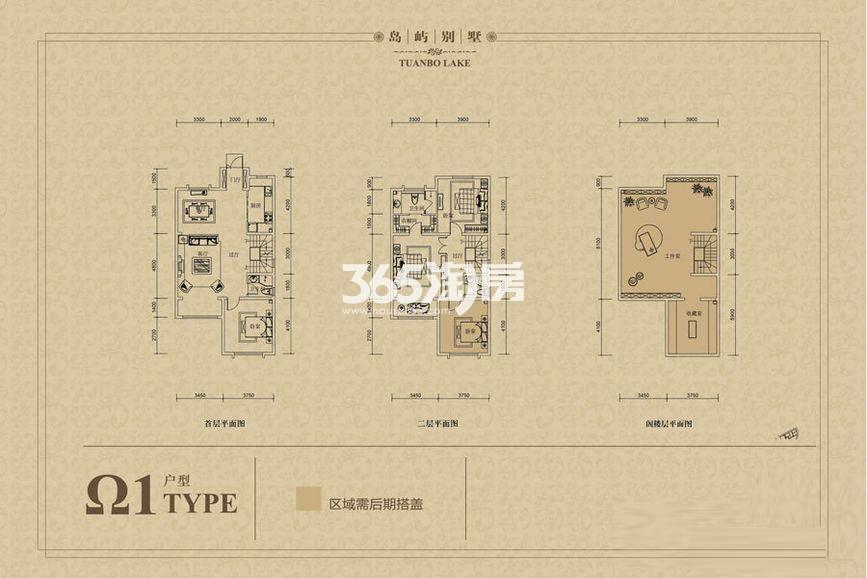 二期联排别墅Ω1-01户型 3室3厅1厨3卫 160.00㎡