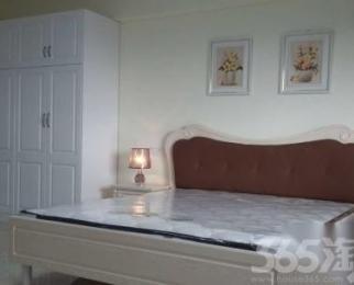 东二环攀华国际全新精装单身公寓22000一年出租