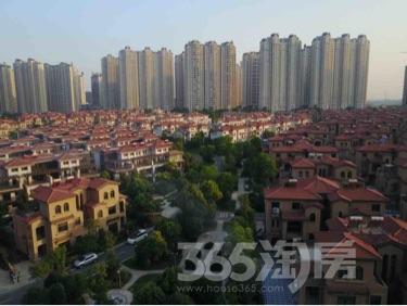 碧桂园凤凰城6室3厅4卫251平米豪华装使用权房2016年