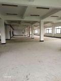 4300平方米标准厂房出售2000平方米标准厂房出租