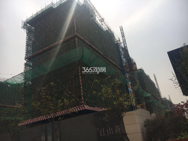 江山薈4号楼实景图(5.24)