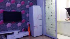 新鸿意瀚海星座2室1厅1卫65平米精装整租
