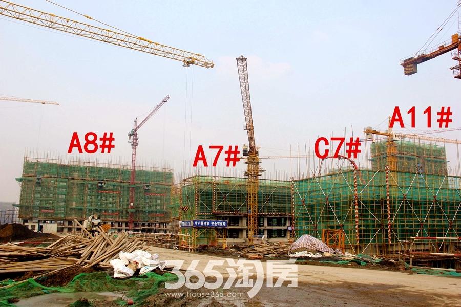 汀海壹品A7#、A8#、A11#、C7#楼12月工程进度(2018.12摄)