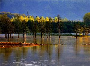 春雾如烟笼奇墅 水掩山遮如仙湖