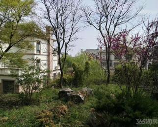 宁杭高速出口湖熟稀缺叠加绿野枫景花园豪华装