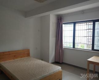 新元金沙家园1室1厅1卫48平米整租精装