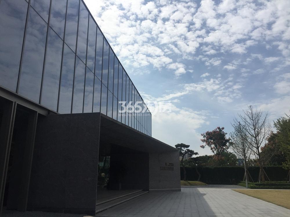 绿城深蓝售楼处实景图(11.20)