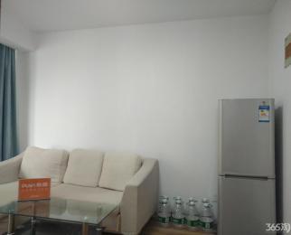 21世纪公寓万科物业小龙湾地铁口单身公寓干净清爽采光好