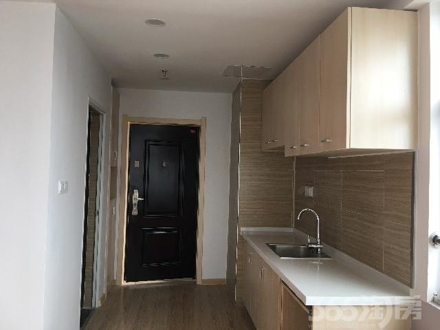 南翔城市广场1室1厅1卫45㎡整租精装