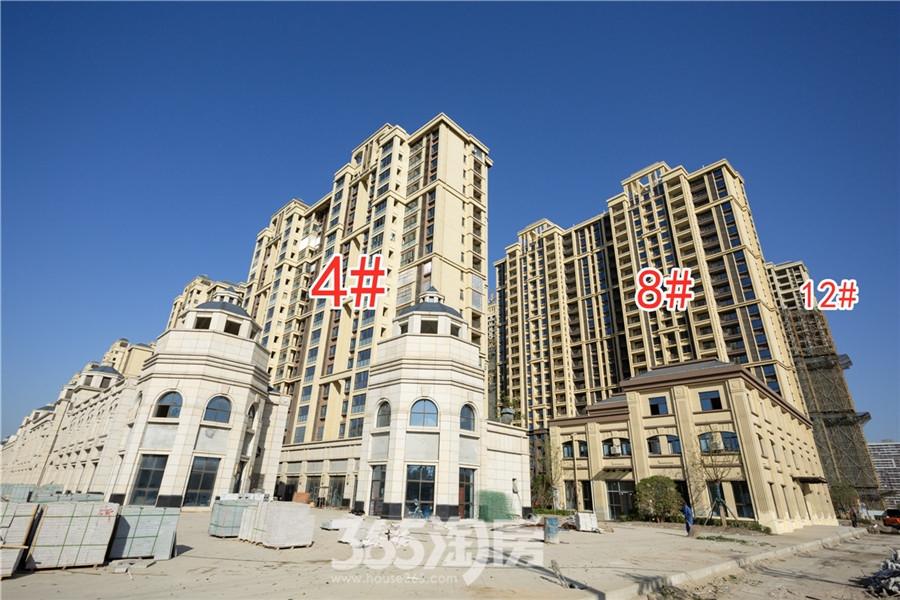 信德悦城4#、8#、12#工程进度(2019.11摄)
