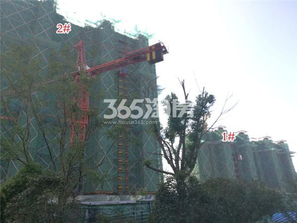 金象朗诗红树林1、2#施工进展(2.28)