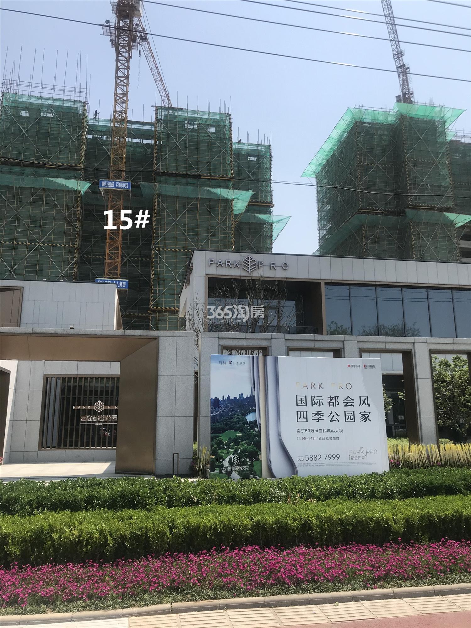 云逸都荟花园西园(都会四季西区)15#工程进展(4.24)