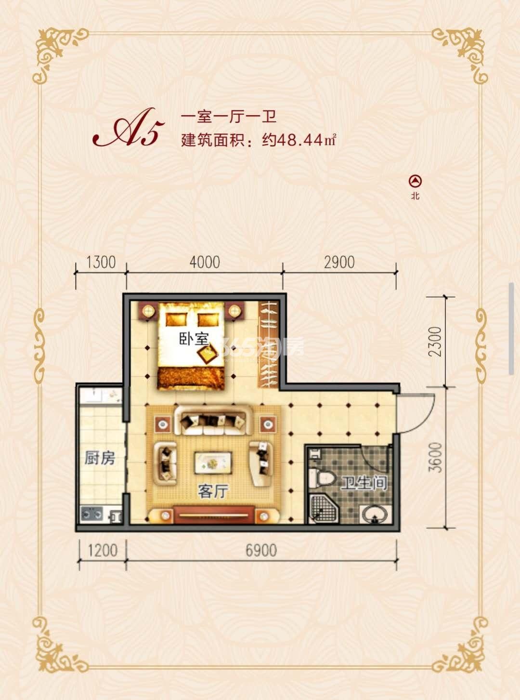 一室一厅一卫48.44㎡