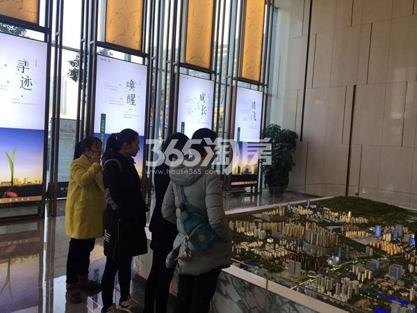 融创城售楼部现场了解项目的购房意向客户(2018.1.3)