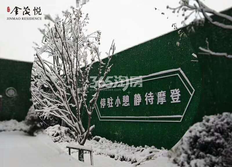 滨湖金茂悦售楼部一角实景图(2018.1.4)