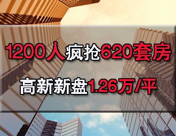 高新纯新盘昨日1.26万/平米首开