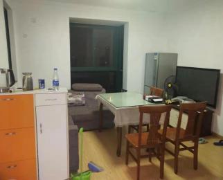 近地铁 居家精装修 设施齐全 拎包入住 随时看房